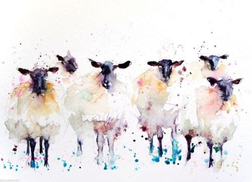 JEN BUCKLEY signed LIMITED EDITON PRINT of my original 6 Black faced SHEEP - Jen Buckley Art - 1