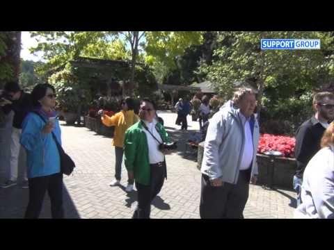 서포트그룹 알래스카 크루즈리더십 연수 - 주네스 글로벌 알래스카 프로모션 - YouTube