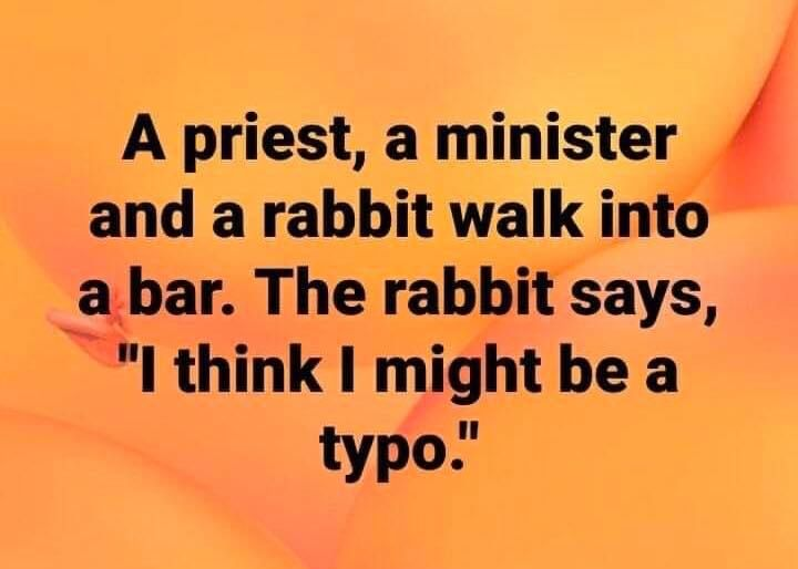 a priest, a minister, and a rabbit walk into a bar in 2020   Funny quotes,  Sayings, Life motto
