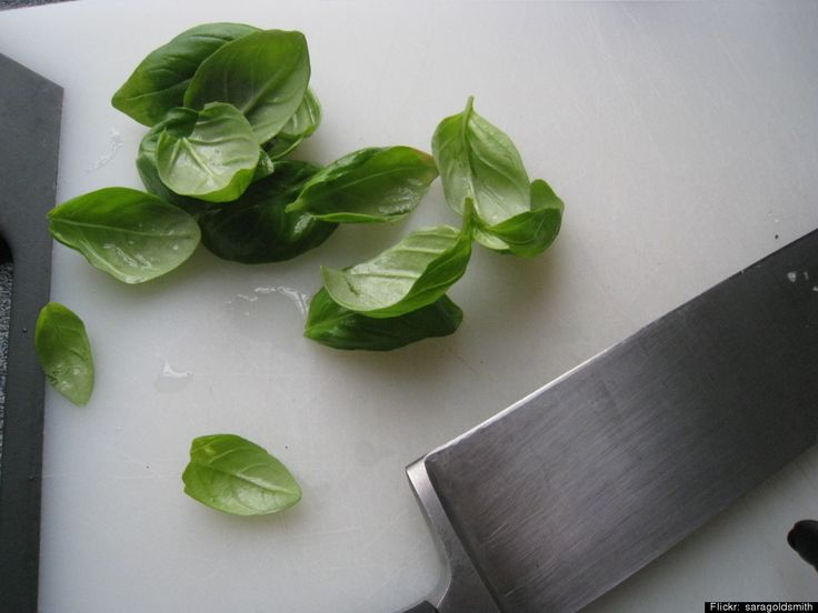 Natural mosquito bite treatment:  Basil. The aromatic leaf naturally contains camphor and thymol, two compounds that can relieve itching. Crush some up and apply it to bites, or buy the essential oil and dab onto the skin.