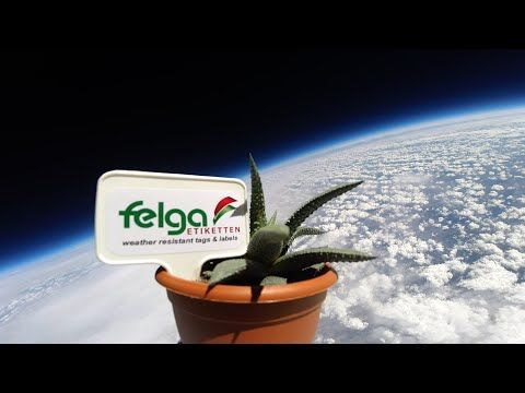 Felga sends potted plant and label into space | Labels & Labeling