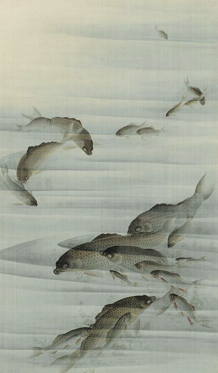 Color in japanese art -  Carp Detail Of A Hanging Scroll Ink And Color On Silk Century Kyoto Japan By Yuko I Think This Would Be Perfect For Display Entertaining A Summer