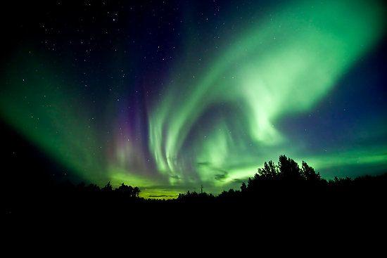 Aurora Borealis by StocktrekImages