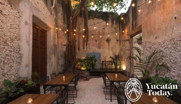 Address: Calle 64#472 por 55y 57,Centro Mérida, Yucatán FB:Cerveza Patito Hours: Monday to Wednesday1 pm – 12 am Thursday to Saturday1 pm – 2 am Sunday1 pm – 6 pm Services: Air conditi…