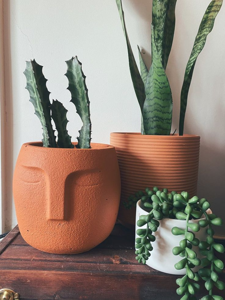 Large face planter with drainage indoor plant pot in