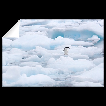 Tay Head, Antarctica Wall Decal 3