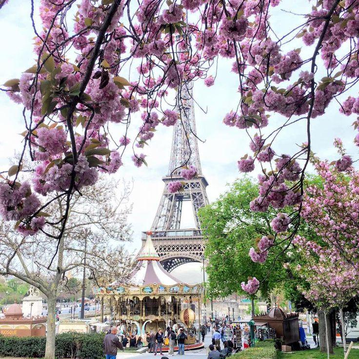 Spring and Paris - the true inspiration!  @Elena Vetrova