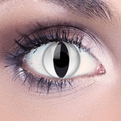 17 Best ideas about White Contact Lenses on Pinterest ...