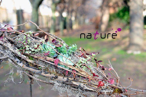 Composición de plantas. www.naturefloral.com Antonio Martínez (Nature)