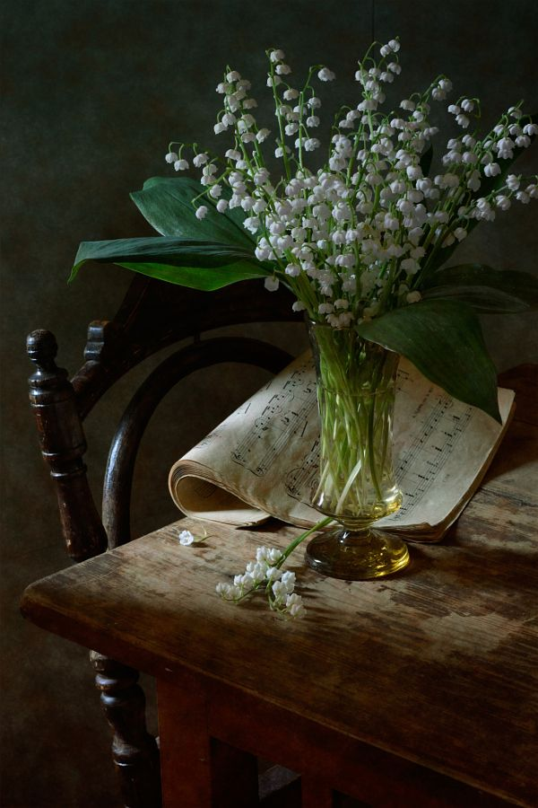 25 best ideas about lily of the valley on pinterest for Fresh art photography facebook