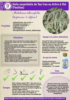 Propriétés du Tea tree : l'huile essentielle anti-bactérie, anti-virus, anti-champi, anti-parasite