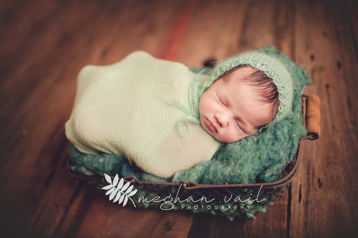 Fine art newborn and infant photography for orlando central florida families orlando florida newborn maternity and family photographer