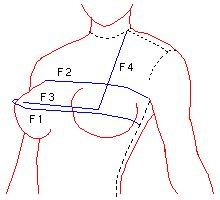 Drafting a bodice - input your measurements and it helps you draft your own pattern! I must try this!