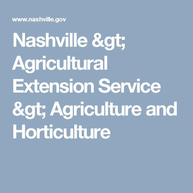 Nashville > Agricultural Extension Service > Agriculture and Horticulture