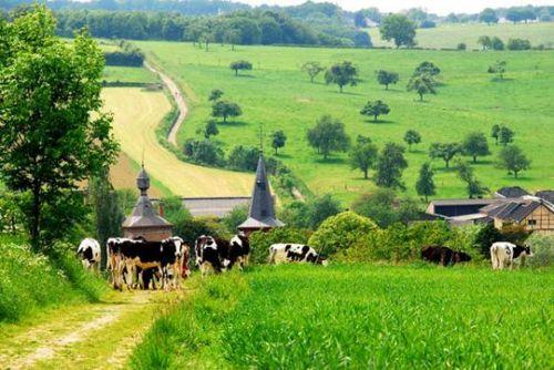 Herberg Sint Brigida - Ver van de wereld en toch zo dichtbij - Noorbeek, Heuvelland, Zuid-Limburg, Wandelen, Rust, hotel, overnachten, restaurant, eten, genieten, Voerstreek