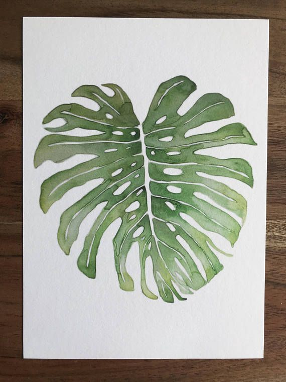 Tropical Leaf Watercolor Painting Print Monstera Leaf