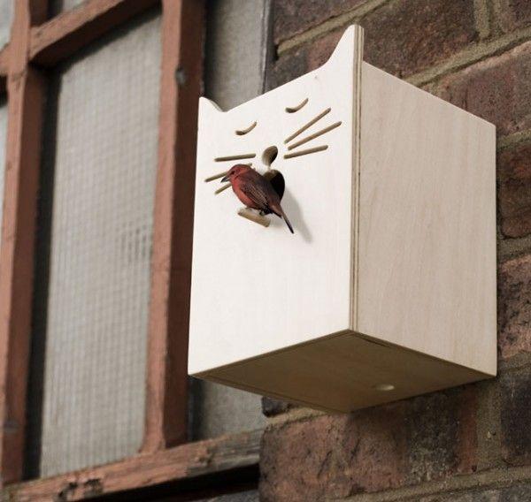 Sylvester Bird Box - $39