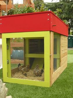 chicken coup and veggie garden