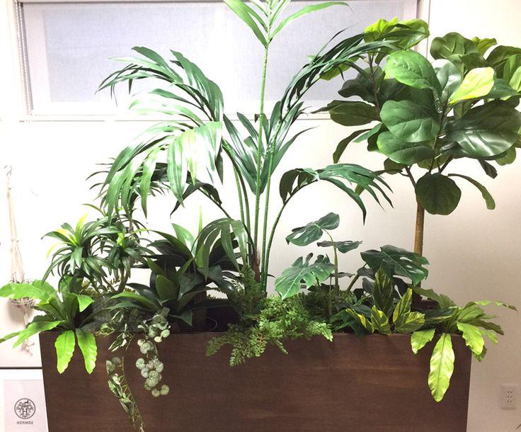 光触媒人工観葉植物、フェイクグリーン、トックリラン、ケンチャヤシ、アガベ、モンステラ、インドゴムノキ、バーネストファーン、アジアンタムブッシュ、ユキノシタバイン、ファーンブッシュ