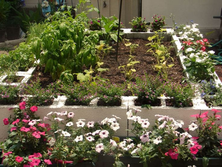 Cinder blocks are an especially utilitarian idea, since their structure makes them not only perfect as an edging material, but as planters themselves. As seen in our image, cinder blocks can make excellent planers when set on their sides, while simultaneously defining the garden as tightly as possible.