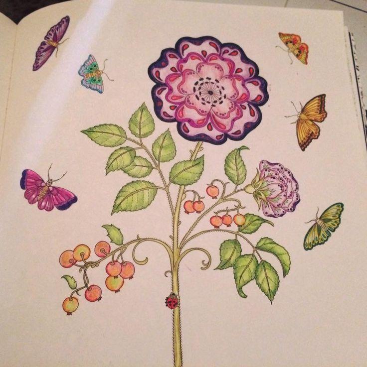 my secret garden secret gardens colouring coloring books - My Secret Garden Coloring Book