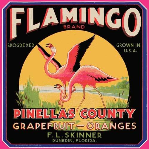 Flamingo citrus label