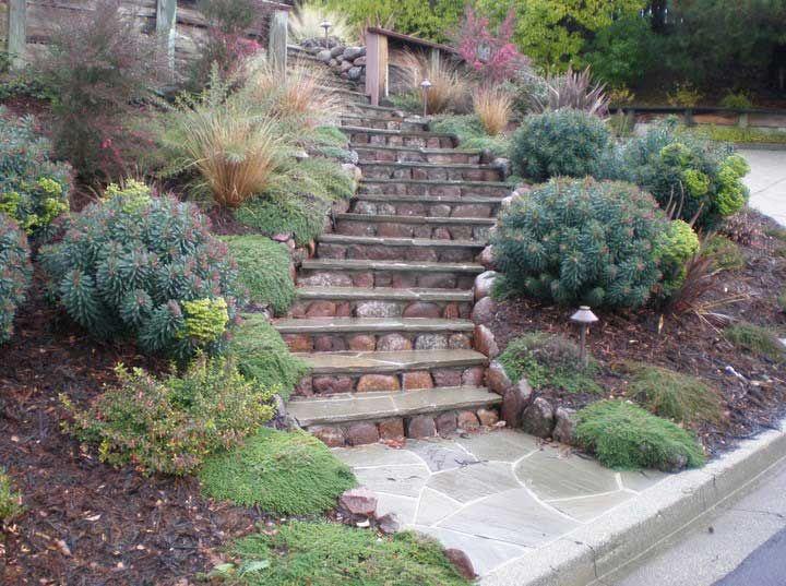 Steep Hillside Landscaping Design Ideas Small Hillside Lands For Outdoor  Decor Plans With Home Succulent Garden