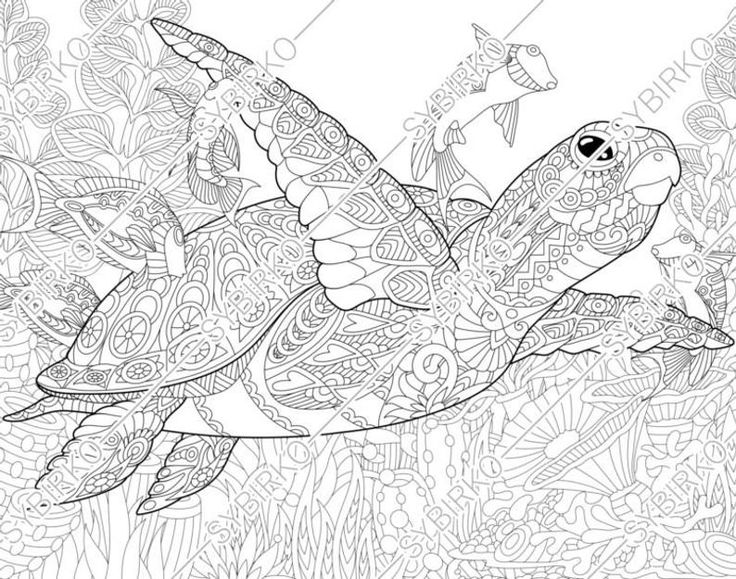 44++ Printable turtle coloring pages for adults info