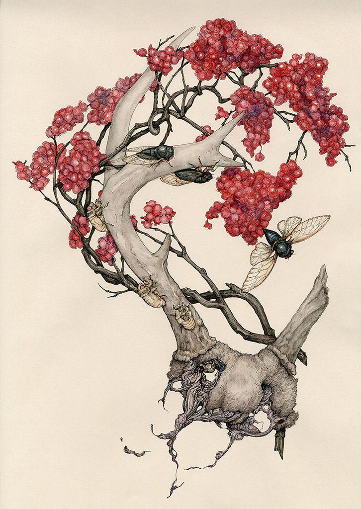 Synesthesia Garden - a weird art + style blog | » Blog Archive » Lauren Marx