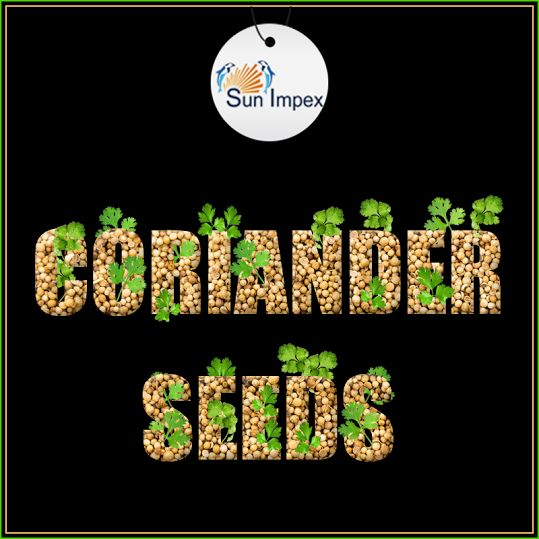 Coriander - An all-time favourite spice  Coriander has a sweet and slightly lemony hint. It is used extensively in ethnic cooking in Indian, Middle Eastern and Latin American region. Coriander seeds are preferred for their cholesterol-lowering effects and anti-inflammatory properties. SunImpex exports coriander seeds that have been selected and packed with care so that it reaches you in its purest form.  Visit : http://bit.ly/CorianderSeeds