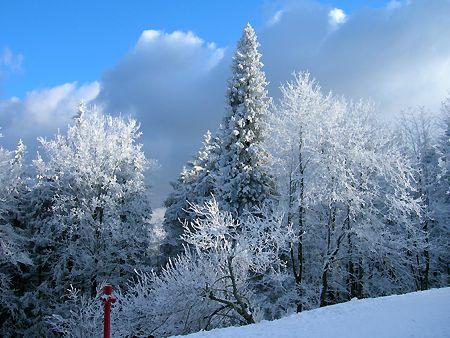 Szyndzielnia Mountain, Beskids, Winter, Bielsko-Biala, Poland