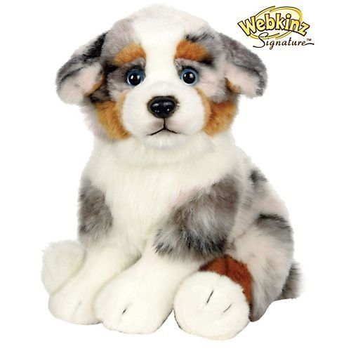 Webkinz Signature Australian Shepherd. This signature is like the first on my list to get. SO CUTE AND RARE