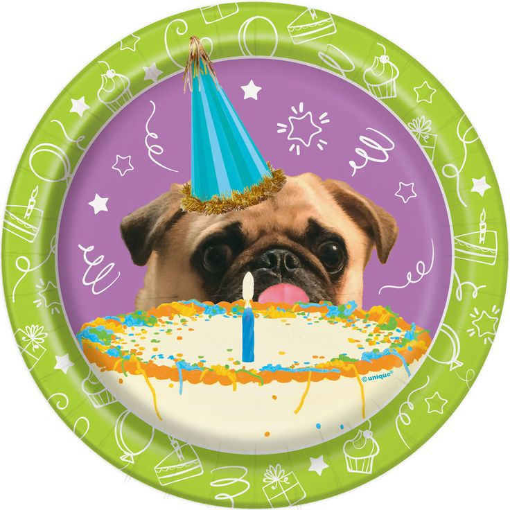 Pass out dessert after your puppy birthday party with these Pug Puppy Party Paper Plates. For puppy party supplies, shop Michaels.com.