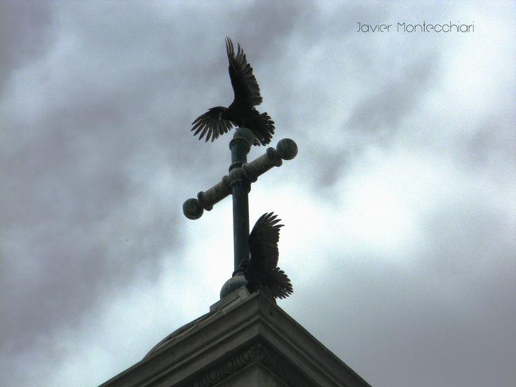 Fotografiando la Imaginación: Cuervos