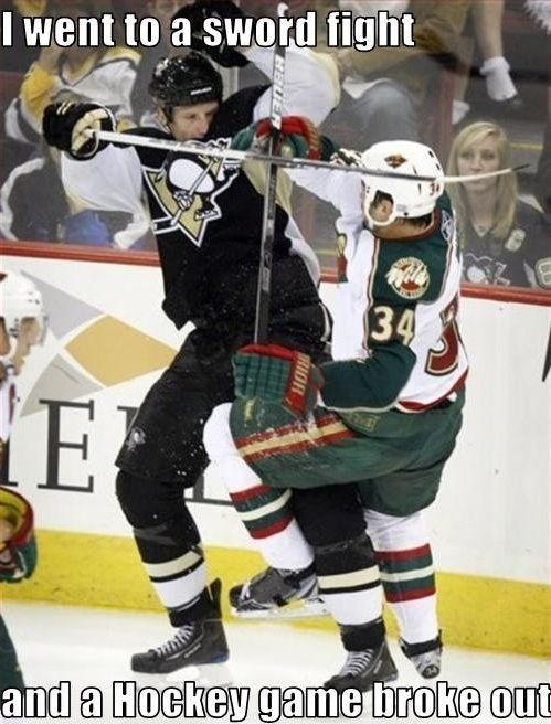 5a04a8f207a0d62adbecbc80058327e8 hockey memes funny hockey 1445 best minnesota wild images on pinterest ice hockey, hockey