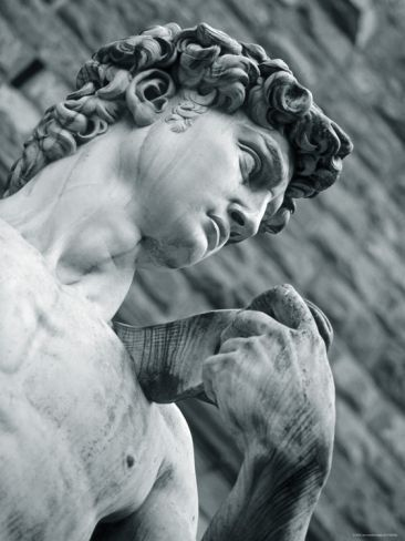 Michelangelo: Statue of David, Florence, Tuscany, Italy Photographic Print by Alan Copson