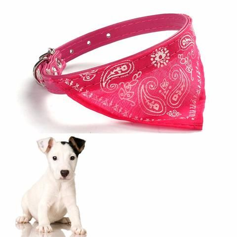 Small Dog / Cat Scarf Collar. Visit Today for Best Discount. While Stocks Last! #BigStarTrading.