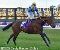 Shirocco(2001)(Colt) Monsun- So Sedulous By The Minstrel. Outcross In First 5 Generations. 13 Starts 7 Wins 1 Second 3 Thirds. $2,477,588. Won 2005 BC Turf(G1) As The Fifth Choice At Odds Of 8.80-1. Jockey Christyophe Soumillon- Trainer Andre Fabre- Owner Baron Georg Von Ullmann.