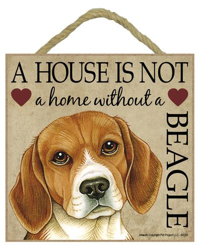 Beagle Dog Sign-beagle breed wooden sign love is being owned by a house not home without spoiled rotten lives here