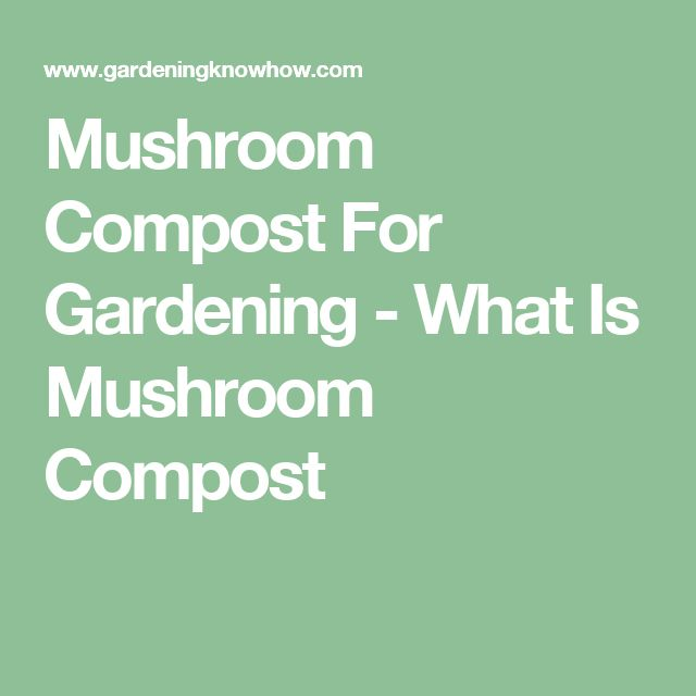 Mushroom Compost For Gardening - What Is Mushroom Compost