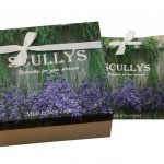 Luxury Scullys Lavender Packs