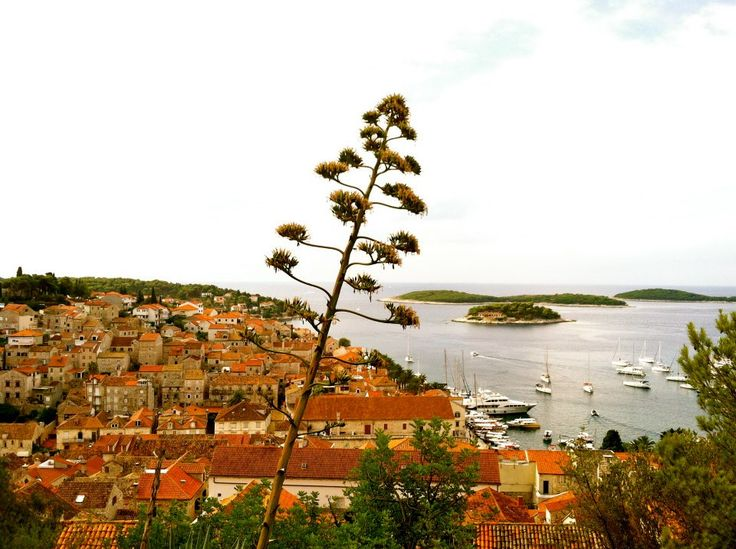 Hvar Island, Croatia #digitalnomads #destinationunknown #nomadlife