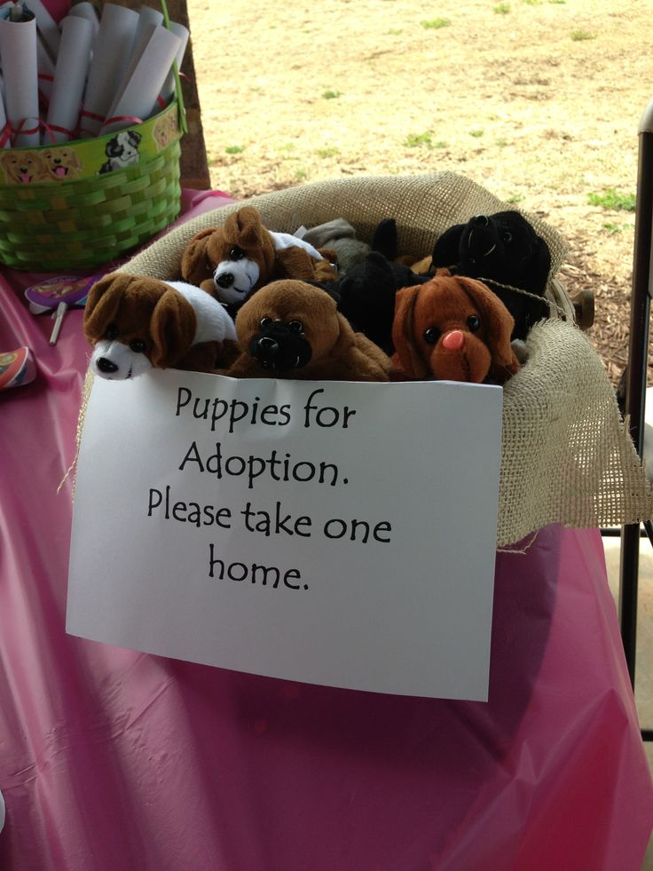 Puppy adoptions: Paw Patrol birthday party favors. Puppies are from Oriental Trading Company.
