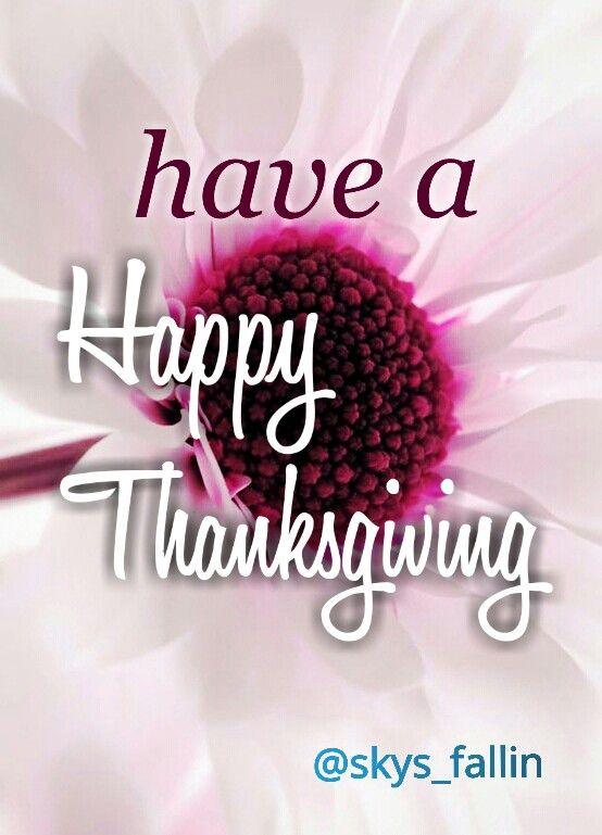 I'm wishing you a very happy Thanksgiving with your loved ones. May God bless you & your family. xx