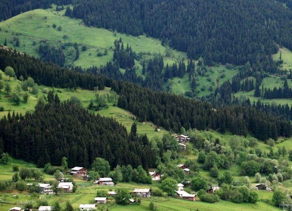 Savsat-national-park.jpg (600×434)
