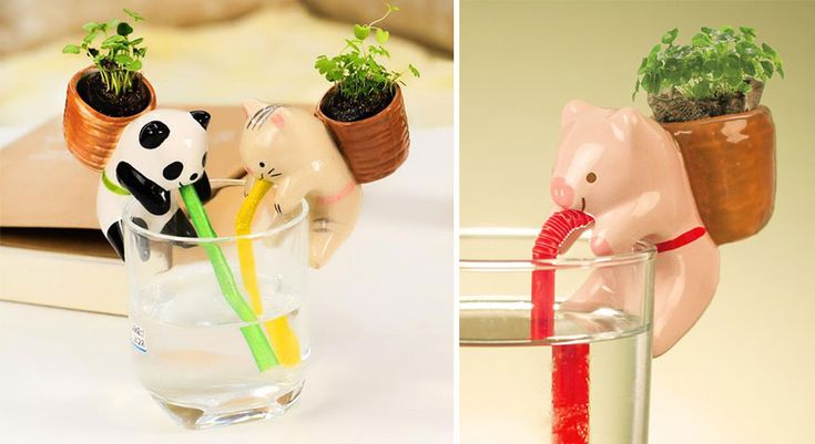 cute-self-watering-ceramic-planters