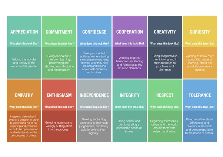 IB Learner Profile, Attitudes, and Key Concepts | wrightstufflearning