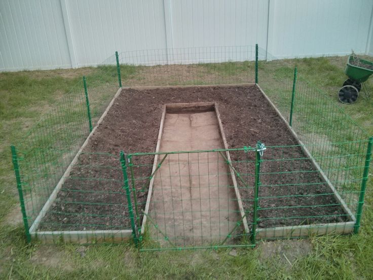 Garden with chicken wire fence and gate                                                                                                                                                                                 More