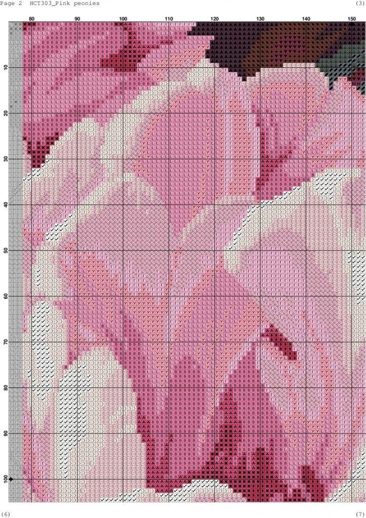 Pink peonies-002