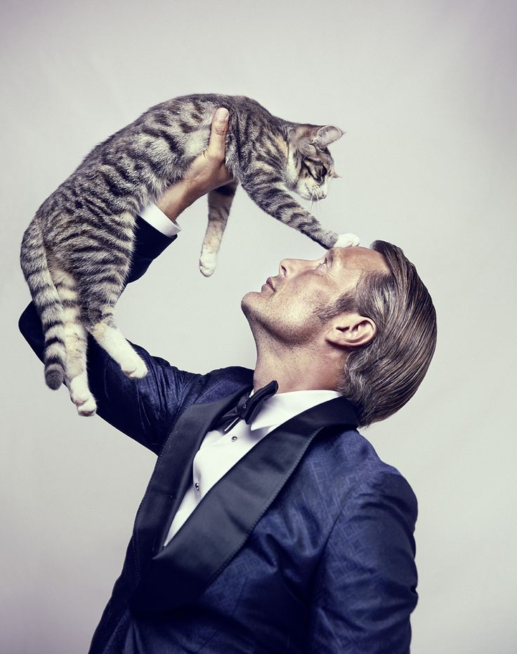 Feline Posing Celebs : mads mikkelsen photoshoot